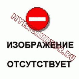 Вилы палетные LW300F(II).39 Mitsuber ML333N